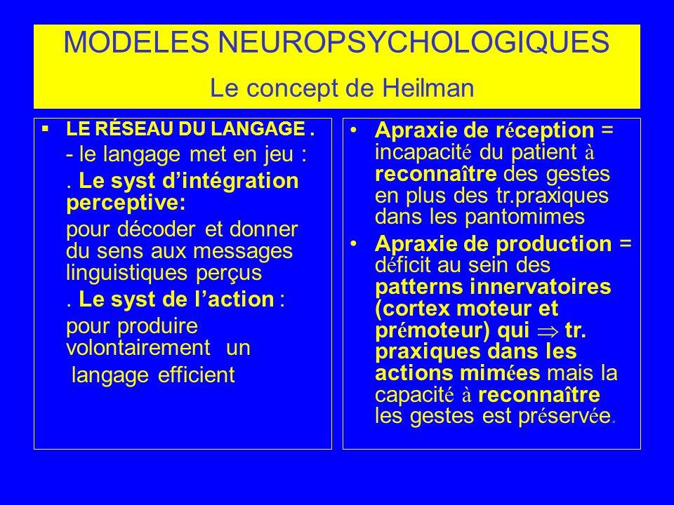 MODELES NEUROPSYCHOLOGIQUES Le concept de Heilman