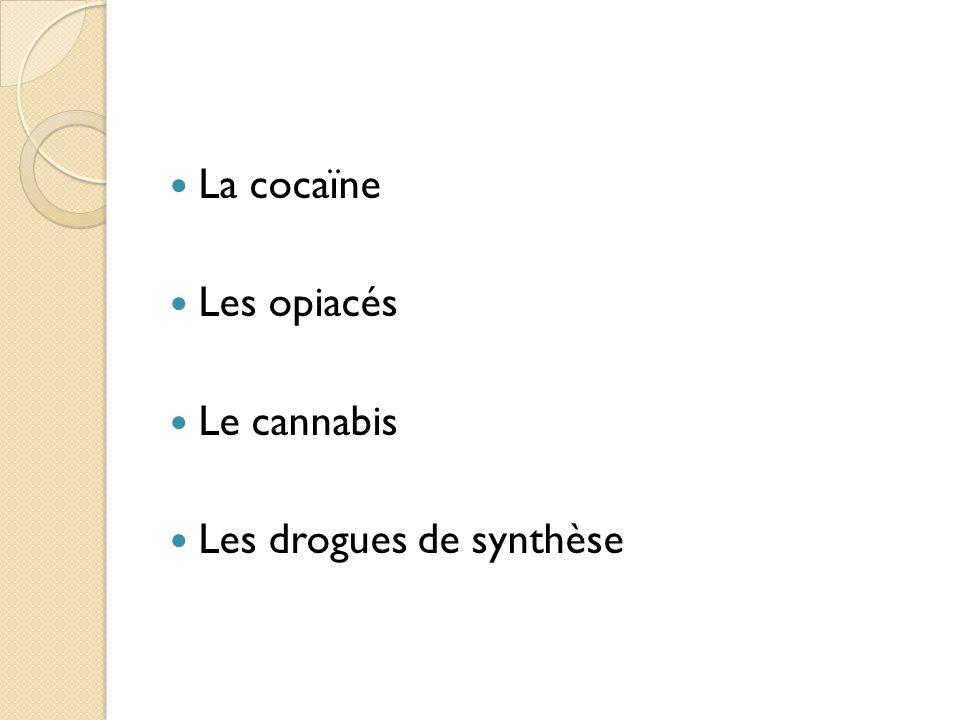 La cocaïne Les opiacés Le cannabis Les drogues de synthèse