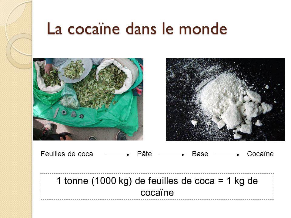 La cocaïne dans le monde