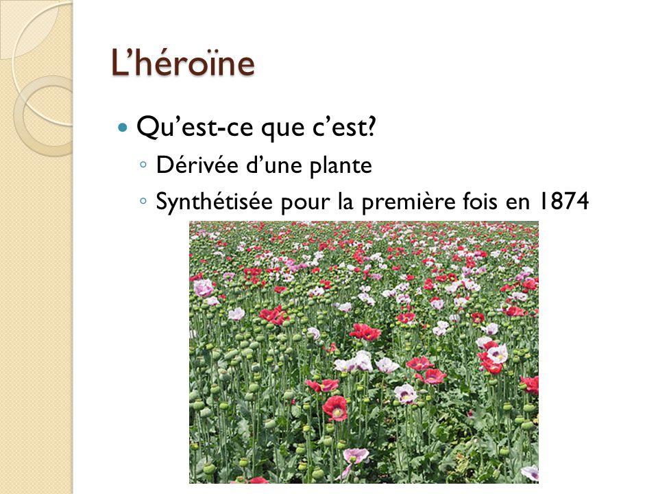 L'héroïne Qu'est-ce que c'est Dérivée d'une plante