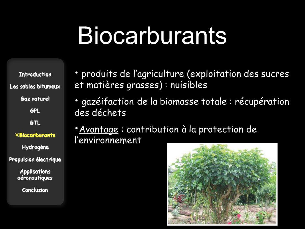 Biocarburants produits de l'agriculture (exploitation des sucres et matières grasses) : nuisibles.