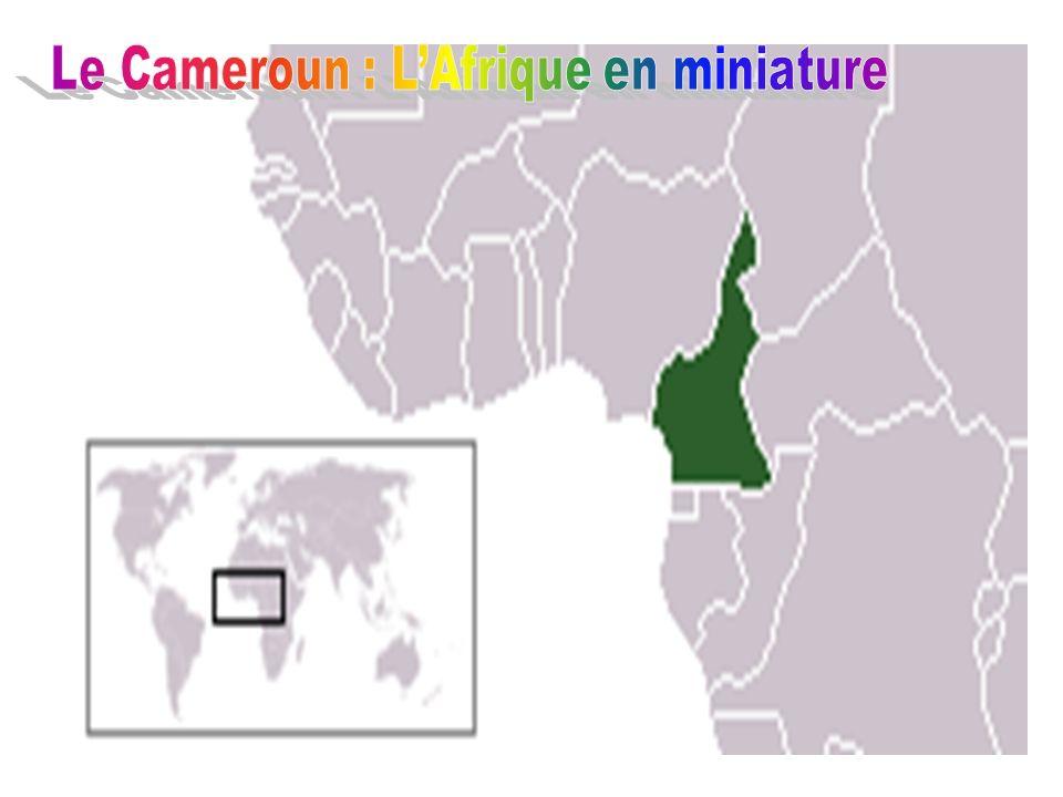 Le Cameroun : L'Afrique en miniature