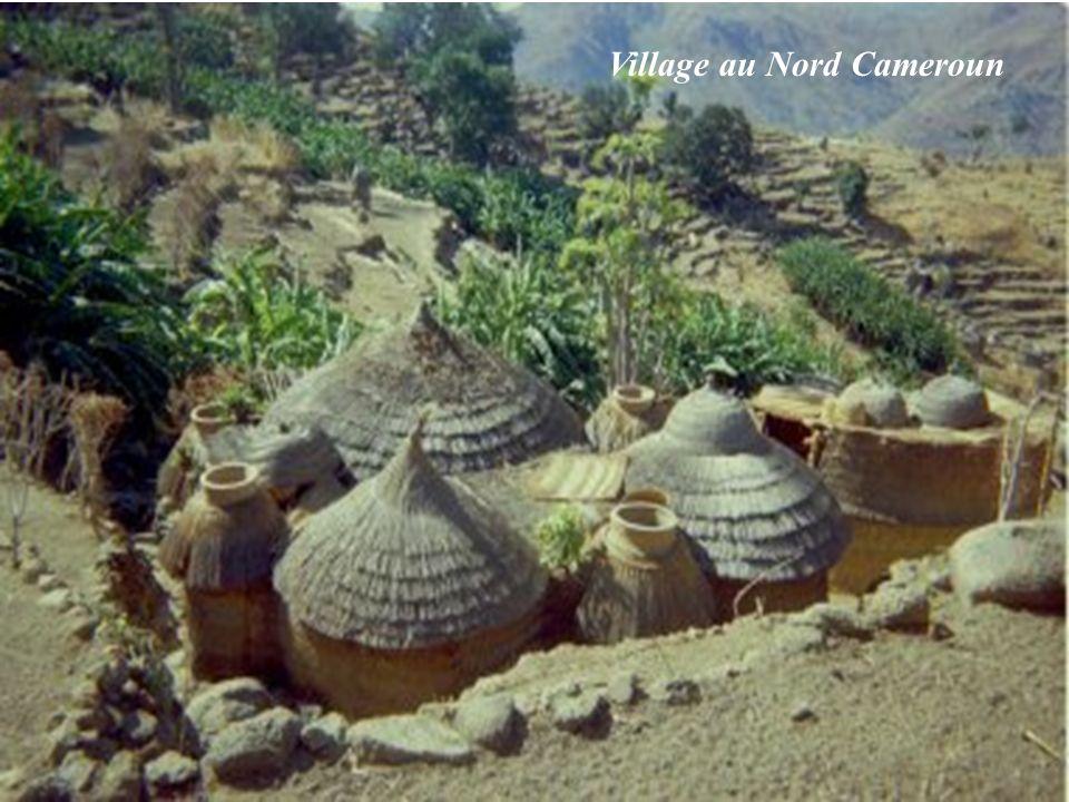 Village au Nord Cameroun