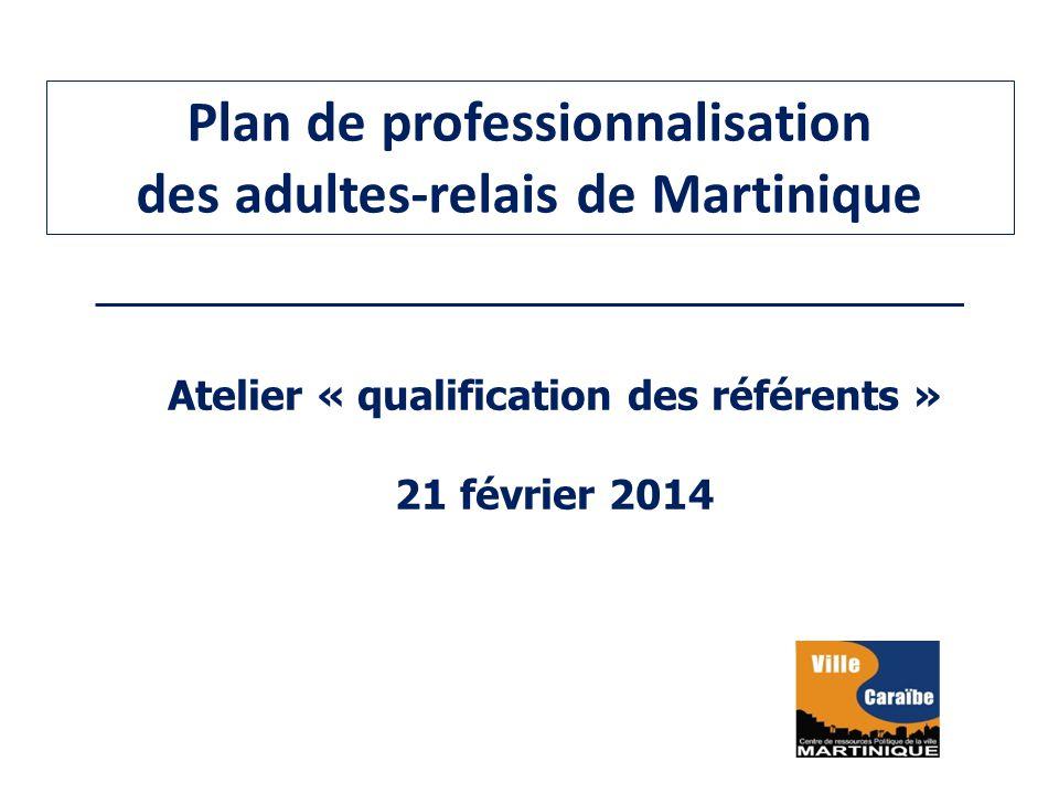 Plan de professionnalisation des adultes-relais de Martinique