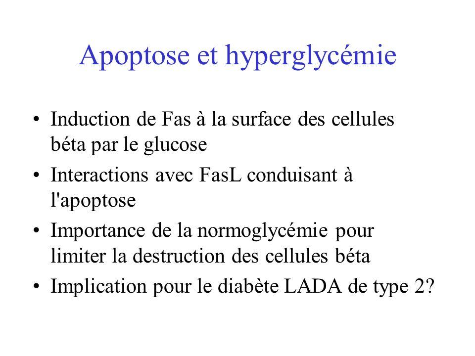 Apoptose et hyperglycémie