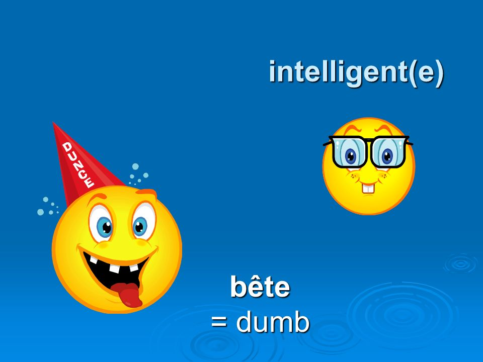 intelligent(e) bête = dumb