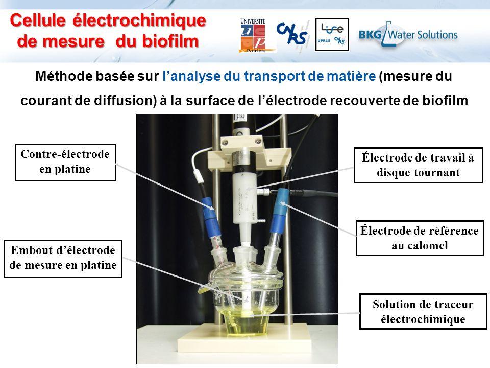 Cellule électrochimique de mesure du biofilm