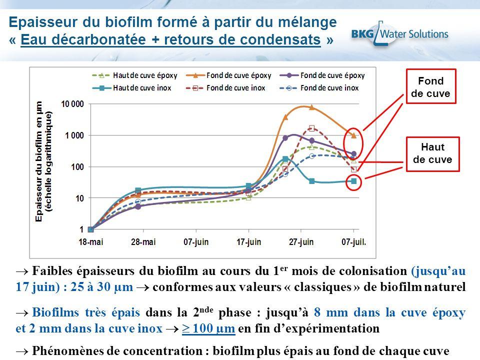Epaisseur du biofilm formé à partir du mélange « Eau décarbonatée + retours de condensats »