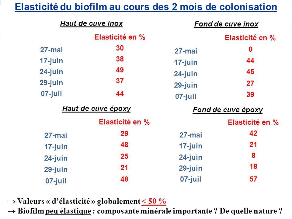 Elasticité du biofilm au cours des 2 mois de colonisation