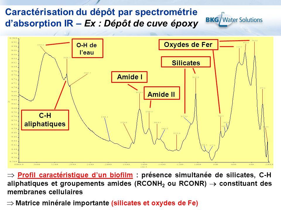 Caractérisation du dépôt par spectrométrie d'absorption IR – Ex : Dépôt de cuve époxy