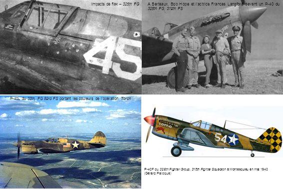 P-40L du 33th, FG 59rd FS portant les couleurs de l'opération Torch