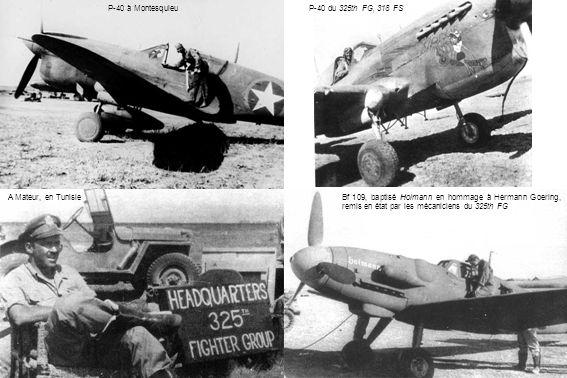 P-40 à Montesquieu P-40 du 325th FG, 318 FS. A Mateur, en Tunisie.
