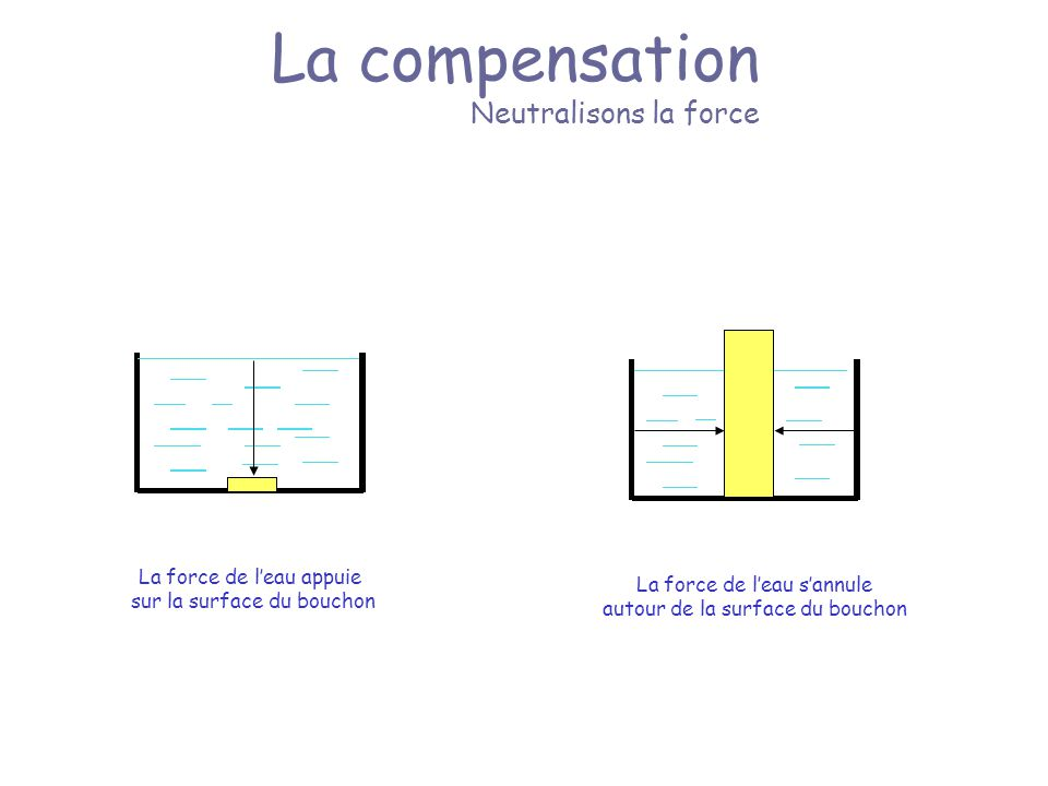 La compensation Neutralisons la force