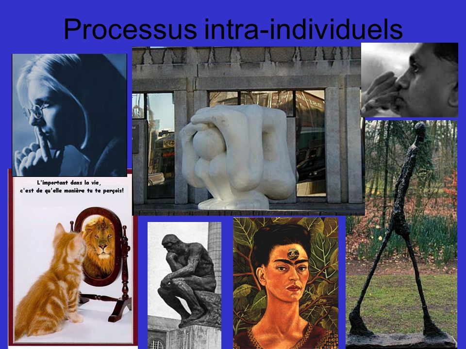 Processus intra-individuels