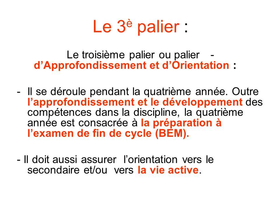 Le troisième palier ou palier d'Approfondissement et d'Orientation :