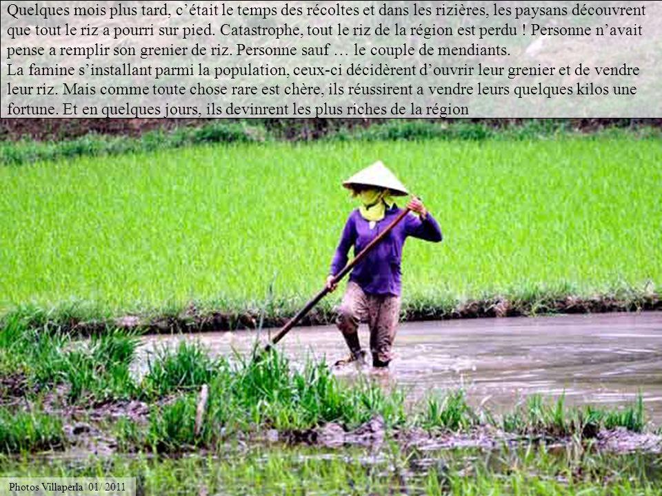 Quelques mois plus tard, c'était le temps des récoltes et dans les rizières, les paysans découvrent que tout le riz a pourri sur pied. Catastrophe, tout le riz de la région est perdu ! Personne n'avait pense a remplir son grenier de riz. Personne sauf … le couple de mendiants. La famine s'installant parmi la population, ceux-ci décidèrent d'ouvrir leur grenier et de vendre leur riz. Mais comme toute chose rare est chère, ils réussirent a vendre leurs quelques kilos une fortune. Et en quelques jours, ils devinrent les plus riches de la région