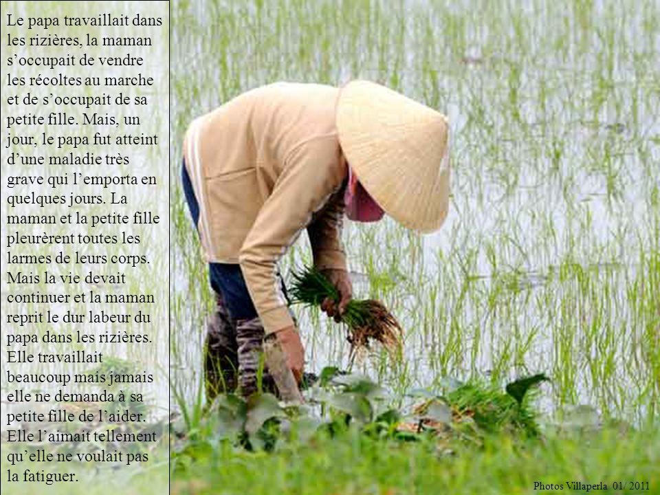 Le papa travaillait dans les rizières, la maman s'occupait de vendre les récoltes au marche et de s'occupait de sa petite fille. Mais, un jour, le papa fut atteint d'une maladie très grave qui l'emporta en quelques jours. La maman et la petite fille pleurèrent toutes les larmes de leurs corps. Mais la vie devait continuer et la maman reprit le dur labeur du papa dans les rizières. Elle travaillait beaucoup mais jamais elle ne demanda à sa petite fille de l'aider. Elle l'aimait tellement qu'elle ne voulait pas la fatiguer.