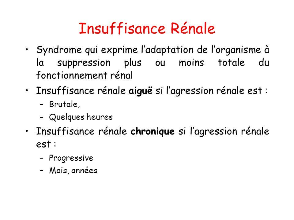 Insuffisance Rénale Syndrome qui exprime l'adaptation de l'organisme à la suppression plus ou moins totale du fonctionnement rénal.