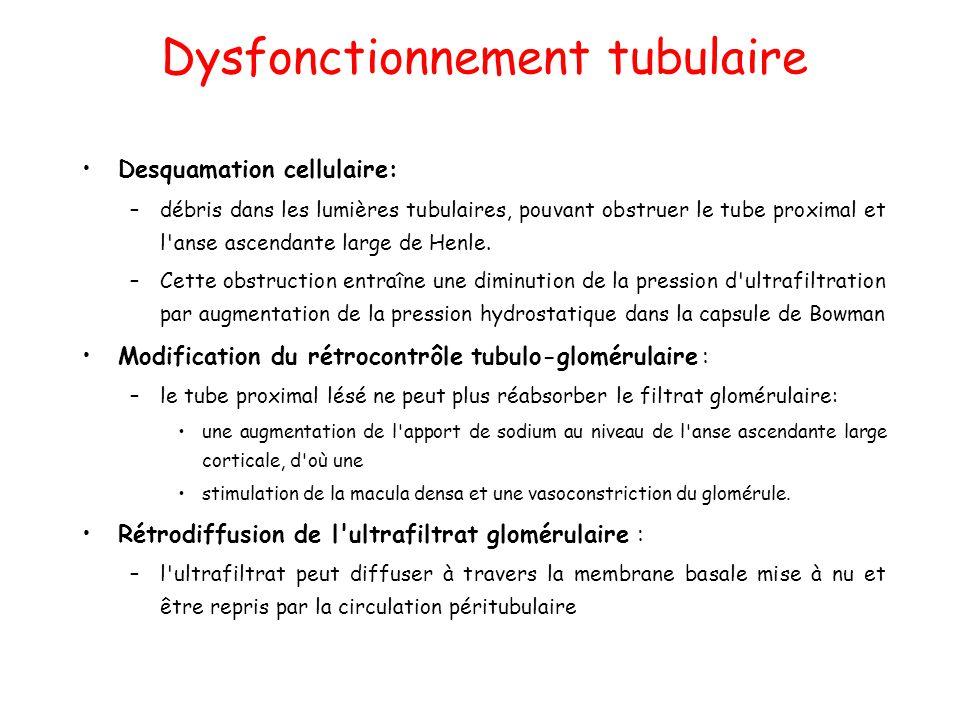 Dysfonctionnement tubulaire