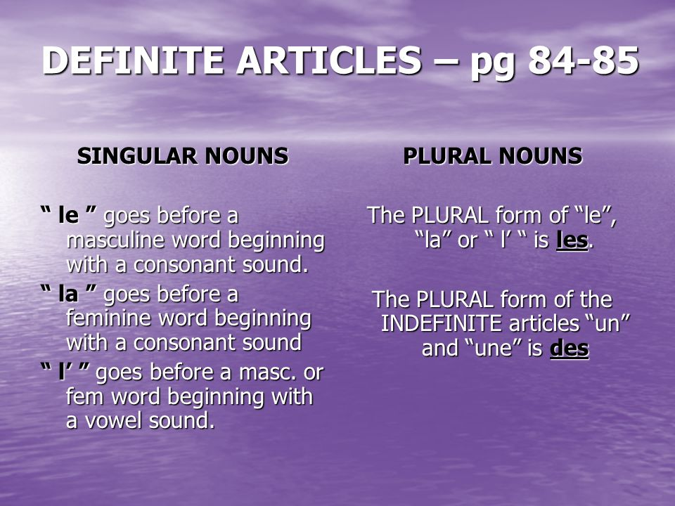 DEFINITE ARTICLES – pg 84-85