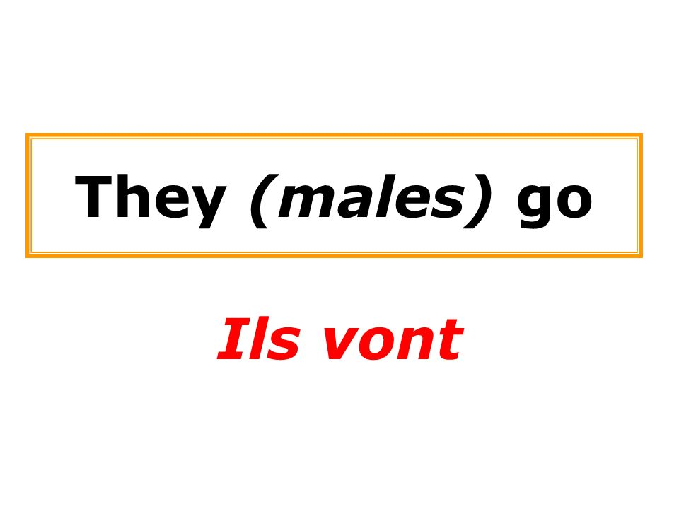 They (males) go Ils vont