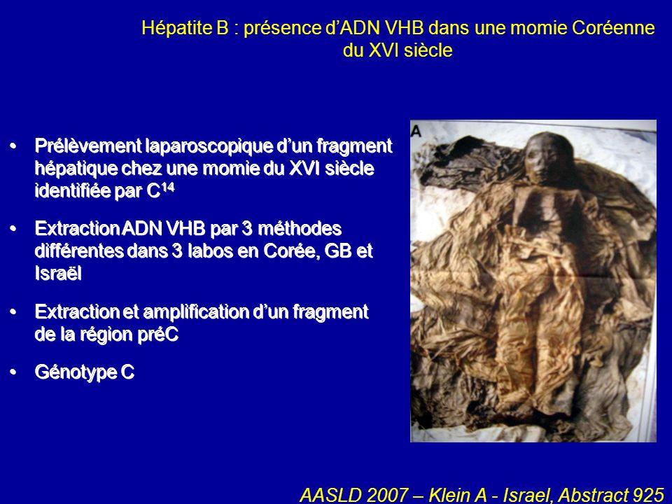 Hépatite B : présence d'ADN VHB dans une momie Coréenne du XVI siècle