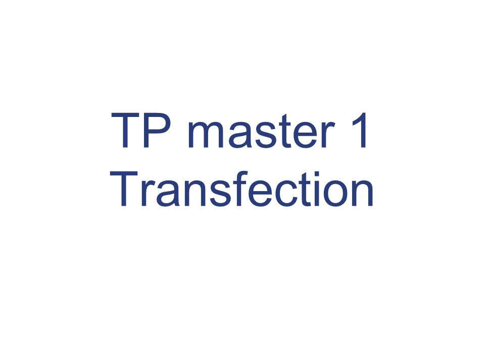 TP master 1 Transfection