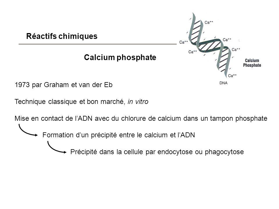 Réactifs chimiques Calcium phosphate 1973 par Graham et van der Eb