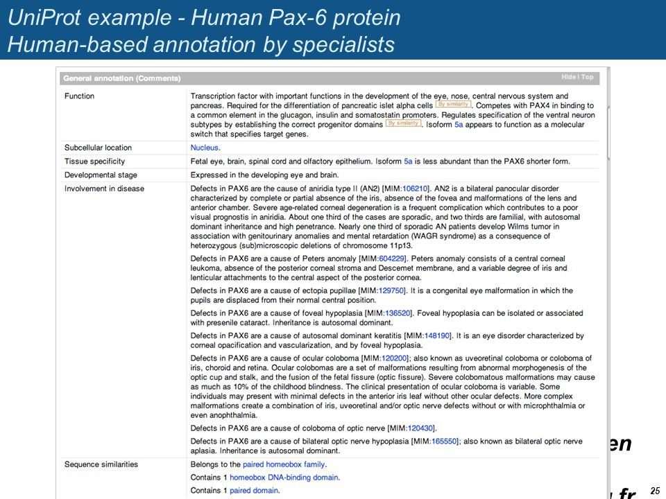 UniProt example - Human Pax-6 protein Human-based annotation by specialists