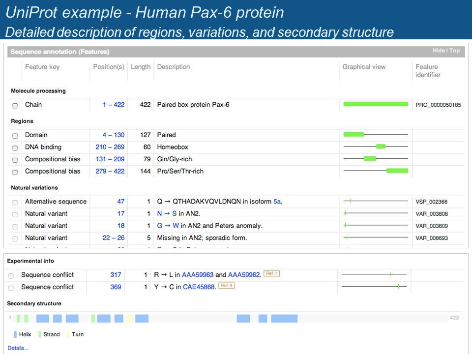 UniProt example - Human Pax-6 protein Detailed description of regions, variations, and secondary structure