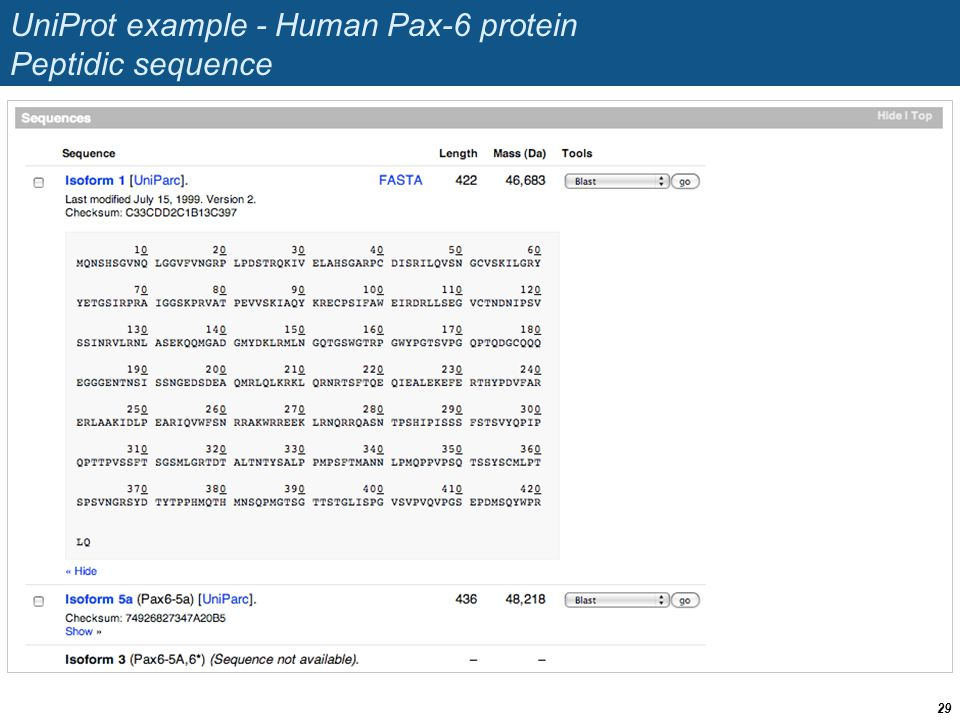 UniProt example - Human Pax-6 protein Peptidic sequence