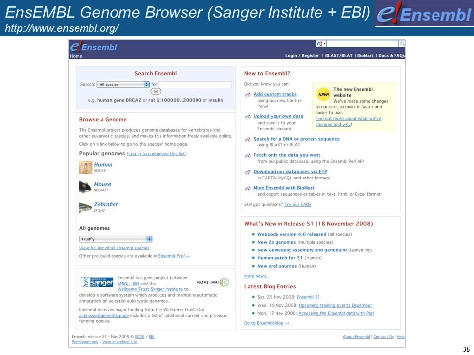 EnsEMBL Genome Browser (Sanger Institute + EBI) http://www. ensembl