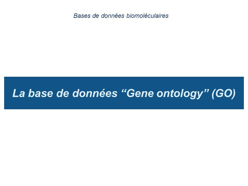 La base de données Gene ontology (GO)