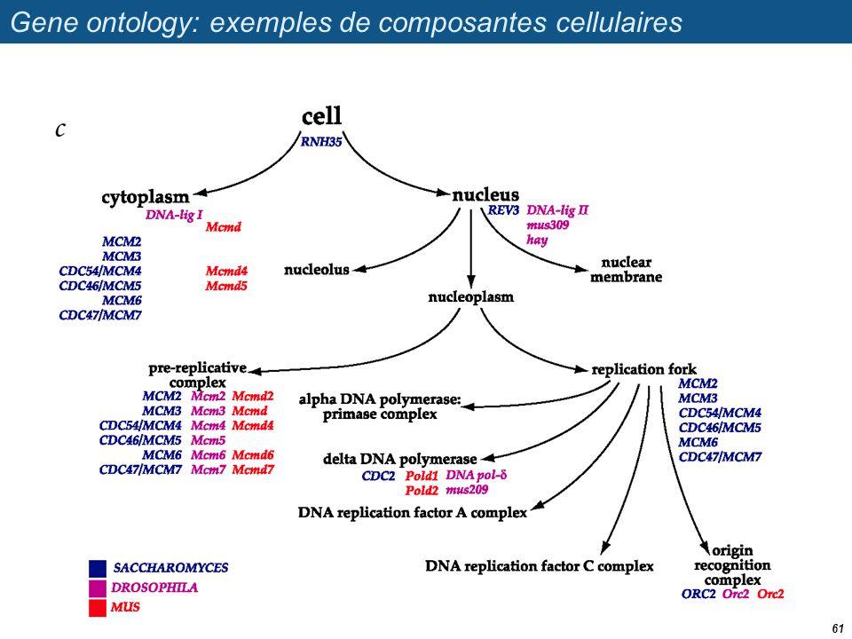 Gene ontology: exemples de composantes cellulaires