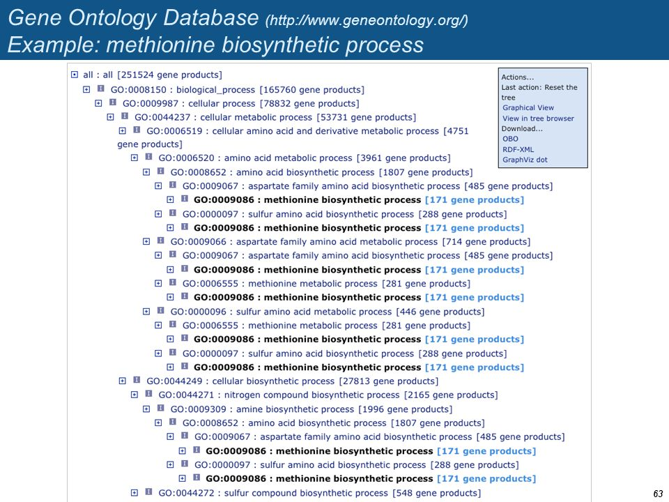 Gene Ontology Database (http://www. geneontology
