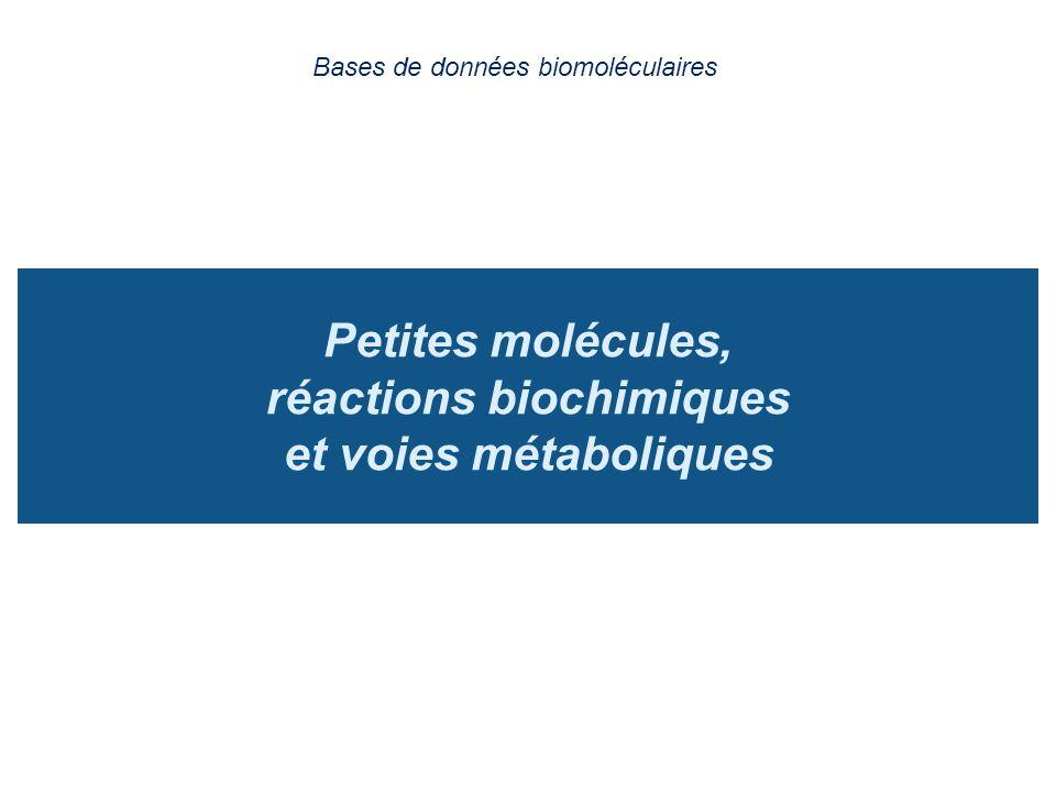 Petites molécules, réactions biochimiques et voies métaboliques