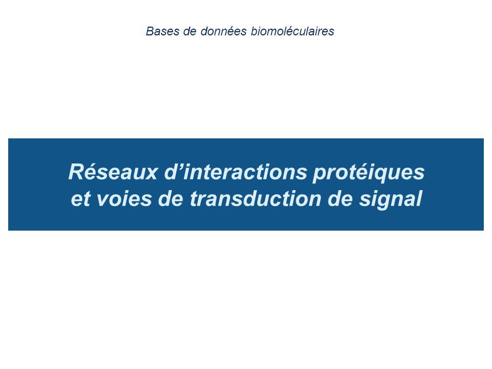 Réseaux d'interactions protéiques et voies de transduction de signal