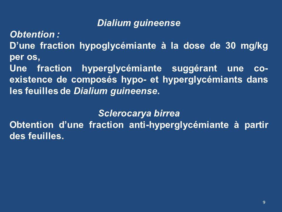 Dialium guineense Obtention : D'une fraction hypoglycémiante à la dose de 30 mg/kg per os,