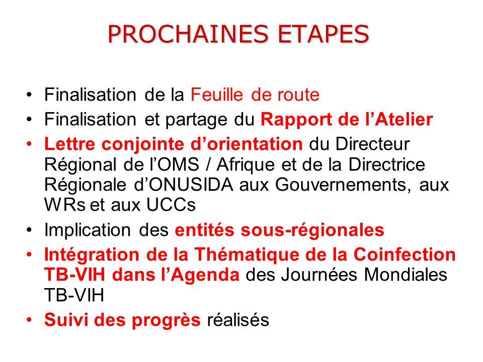 PROCHAINES ETAPES Finalisation de la Feuille de route