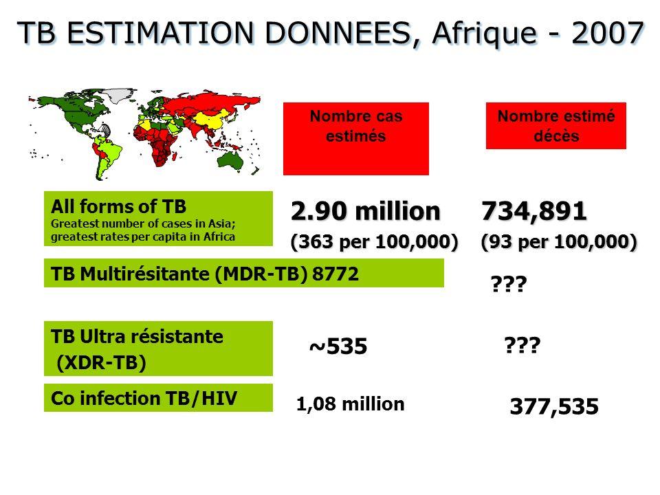 TB ESTIMATION DONNEES, Afrique - 2007