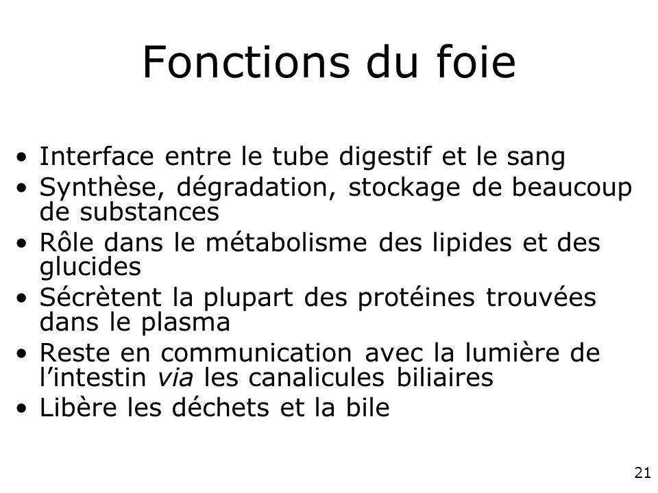 Fonctions du foie Interface entre le tube digestif et le sang