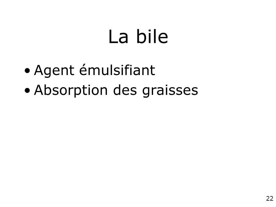 La bile Agent émulsifiant Absorption des graisses #5p1278