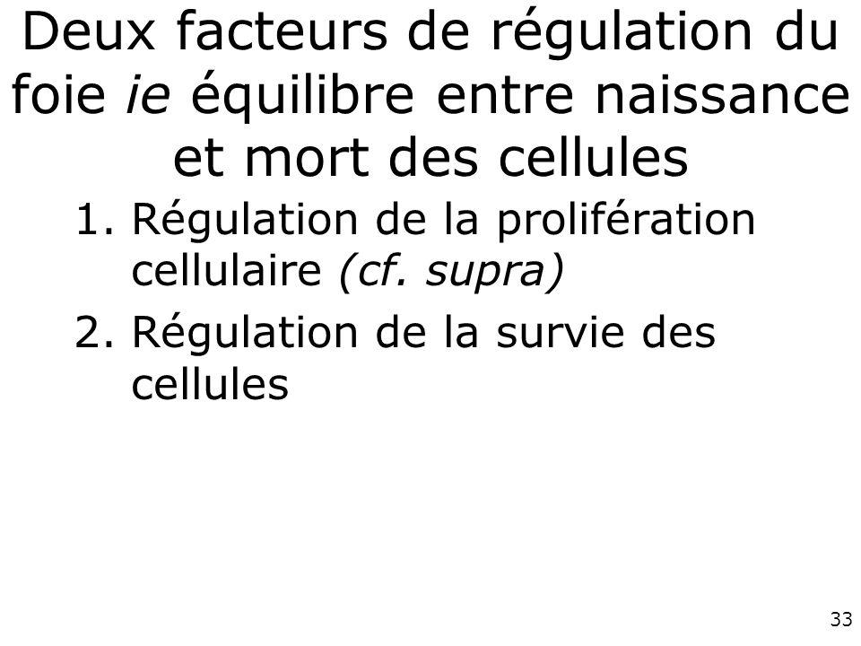 Deux facteurs de régulation du foie ie équilibre entre naissance et mort des cellules
