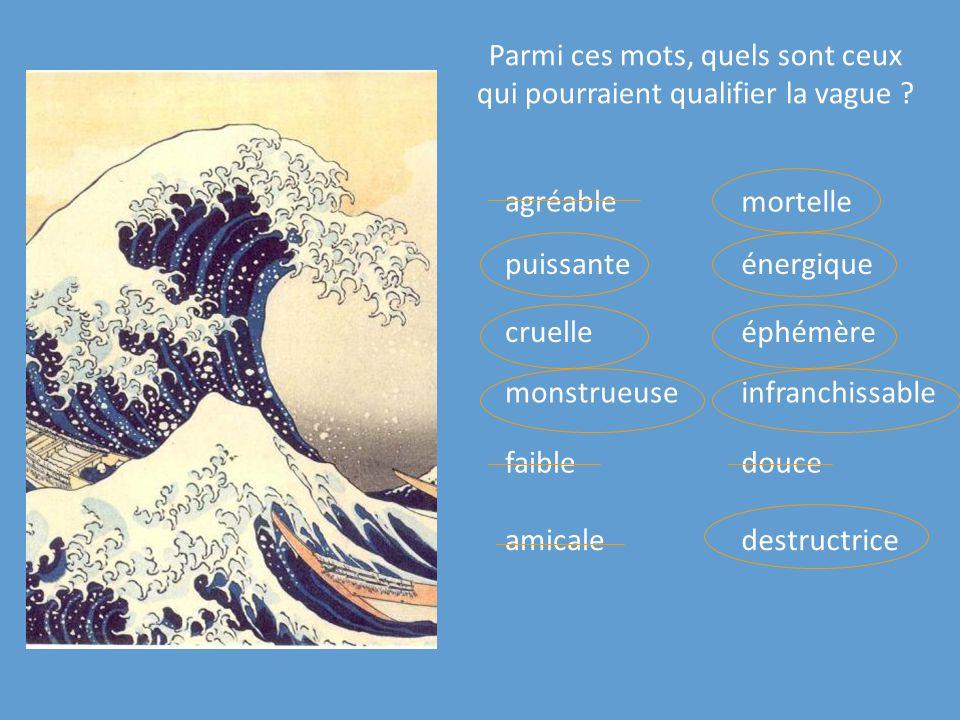 Parmi ces mots, quels sont ceux qui pourraient qualifier la vague