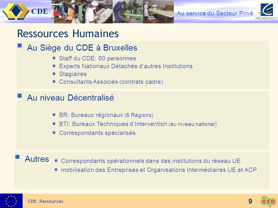 Ressources Humaines Au Siège du CDE à Bruxelles Au niveau Décentralisé