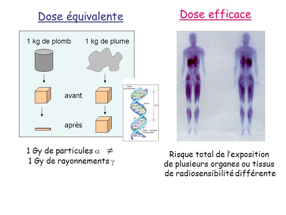 Dose efficace Dose équivalente 1 Gy de particules  