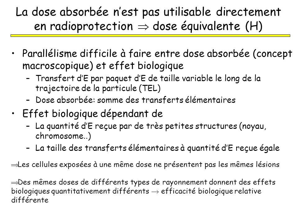 La dose absorbée n'est pas utilisable directement en radioprotection  dose équivalente (H)