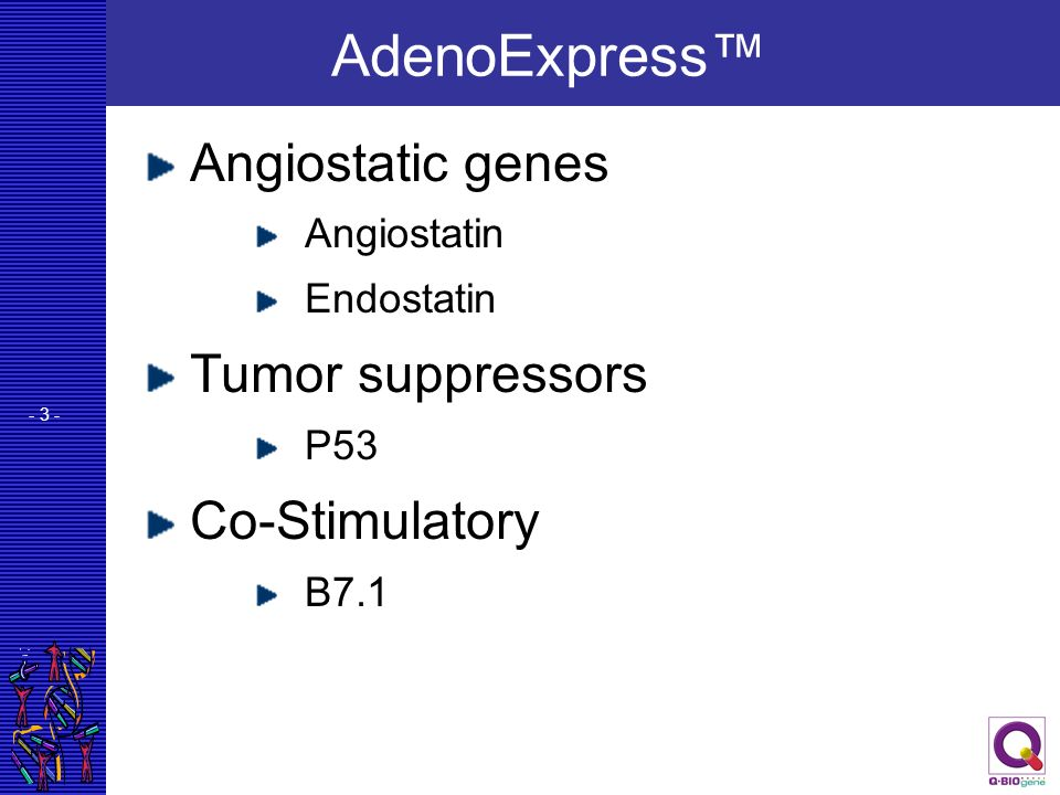 AdenoExpress™ Angiostatic genes Tumor suppressors Co-Stimulatory