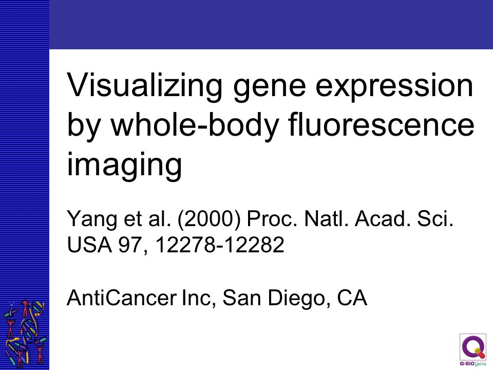Visualizing gene expression by whole-body fluorescence imaging Yang et al.