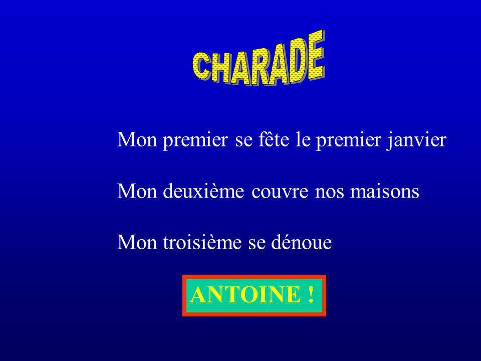 CHARADE ANTOINE ! Mon premier se fête le premier janvier